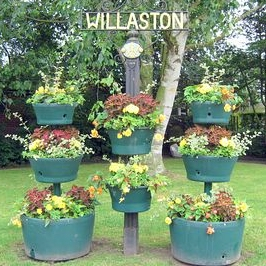 willaston